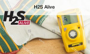 H2S Alive Training